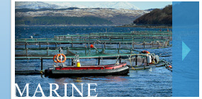 Marine Power Washing and Cleaning Services Inverness, Highlands and Skye